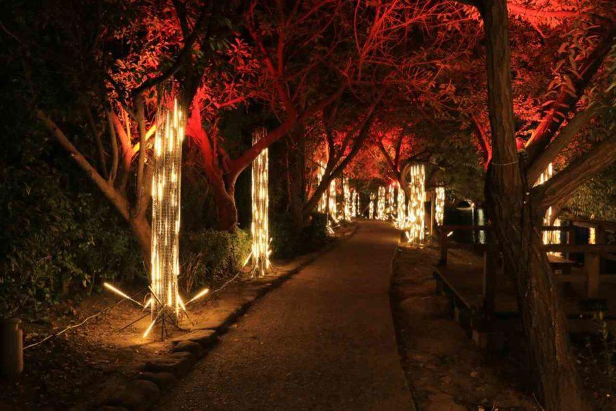 月津港燈節 『四季禮讚』